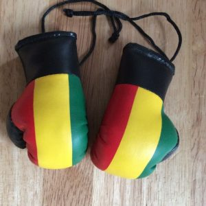 Rasta stripe hanging mini boxing gloves