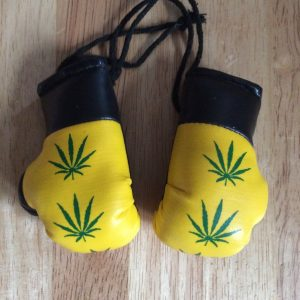 Leaf mini hanging boxing gloves